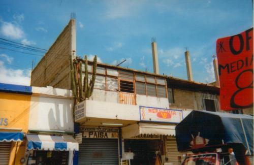 070. OaxacaKaktus