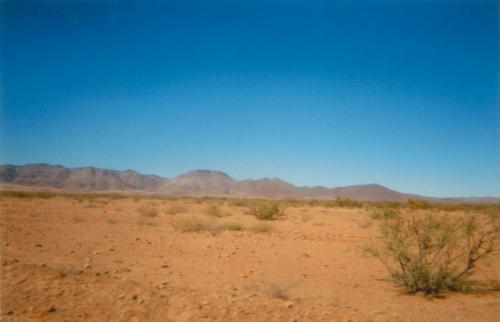 133. Wüste bei NuevoCasasGrandes