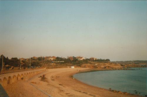 166. -11. Qingdao